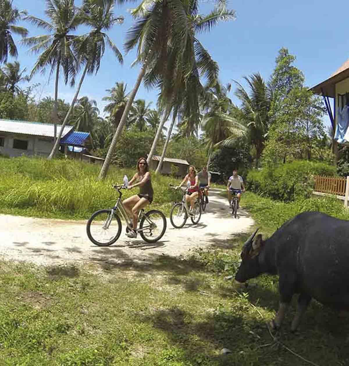 long-tail-boat-training-paradise-phuket-1