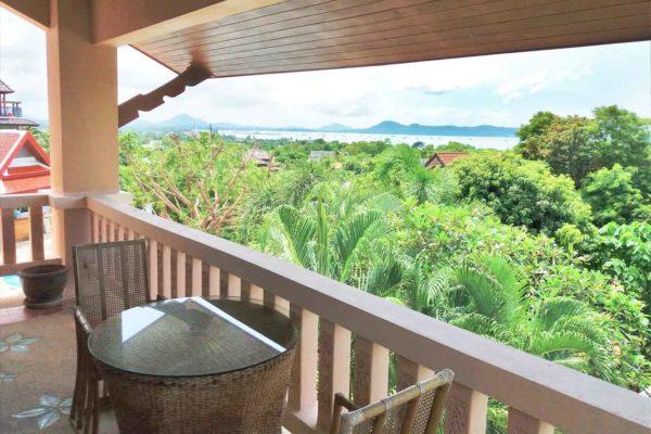 training-paradise-coconut-view1