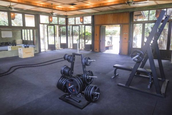 training-paradise-gym-weights