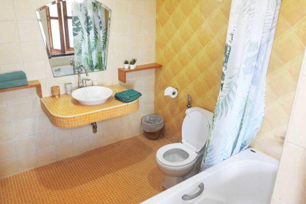 training-paradise-magosteen-bathroom