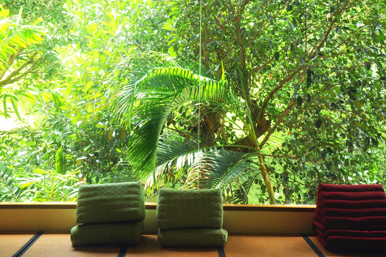 training-paradise-window-library-1